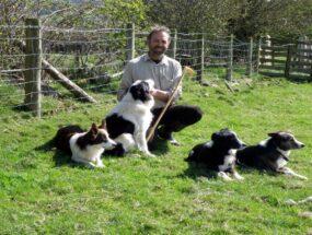 thomas-longton-sheepdogsac2c